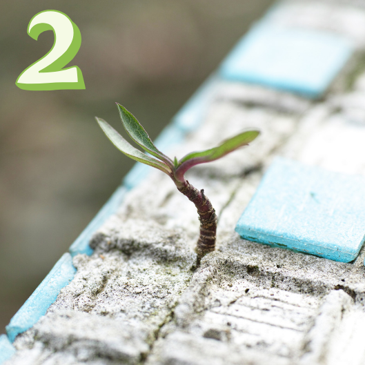 2x carbon offset - Once we're profitable, any excess profits will be invested to offset 2X our carbon footprint. Our climate won't improve if we stay neutral, so we're making it a part of our DNA to do good.The bigger we grow, the more we help. We won't be around forever, but we will help while we can.