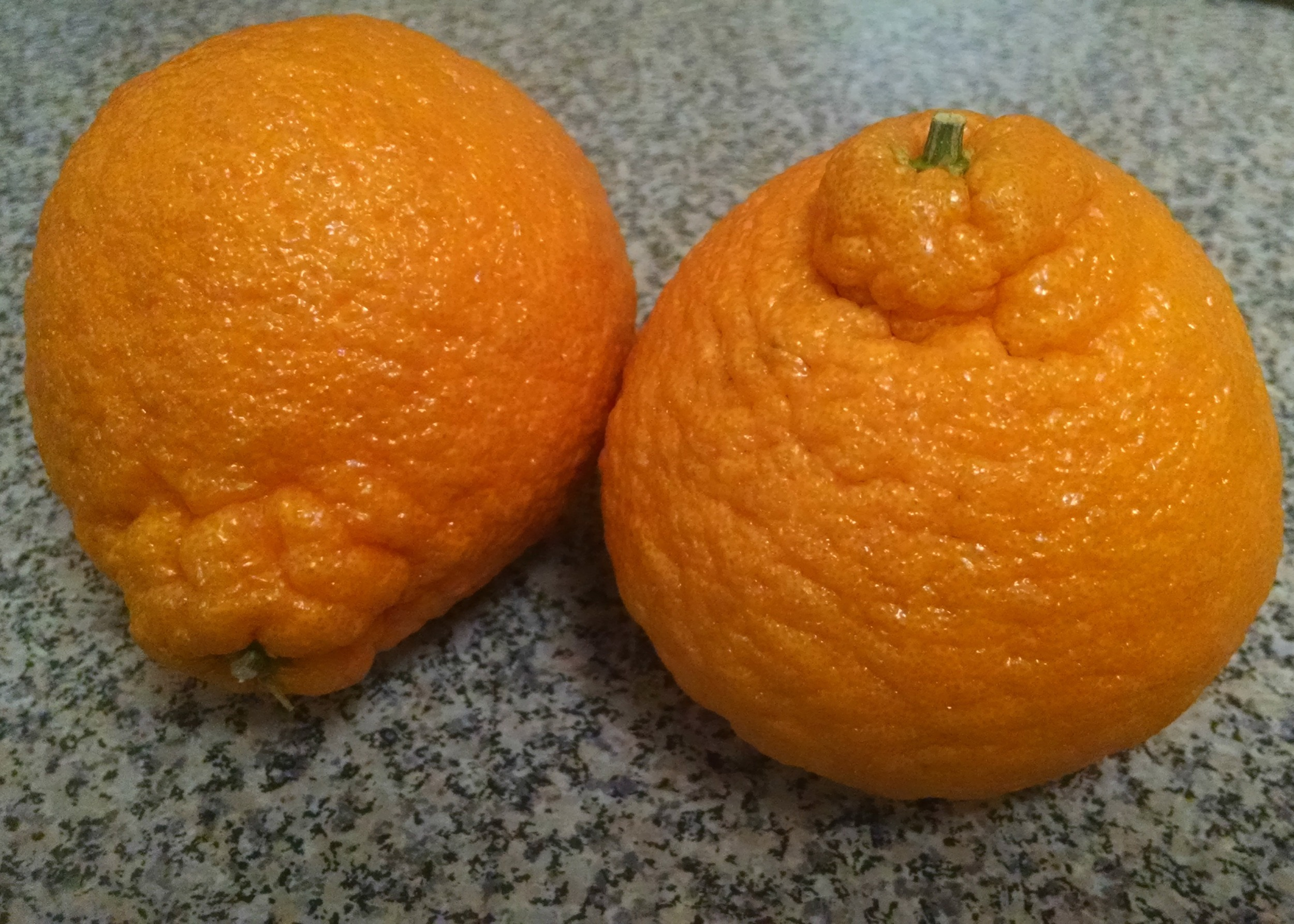 Bigger than an orange but smaller than a grapefruit.