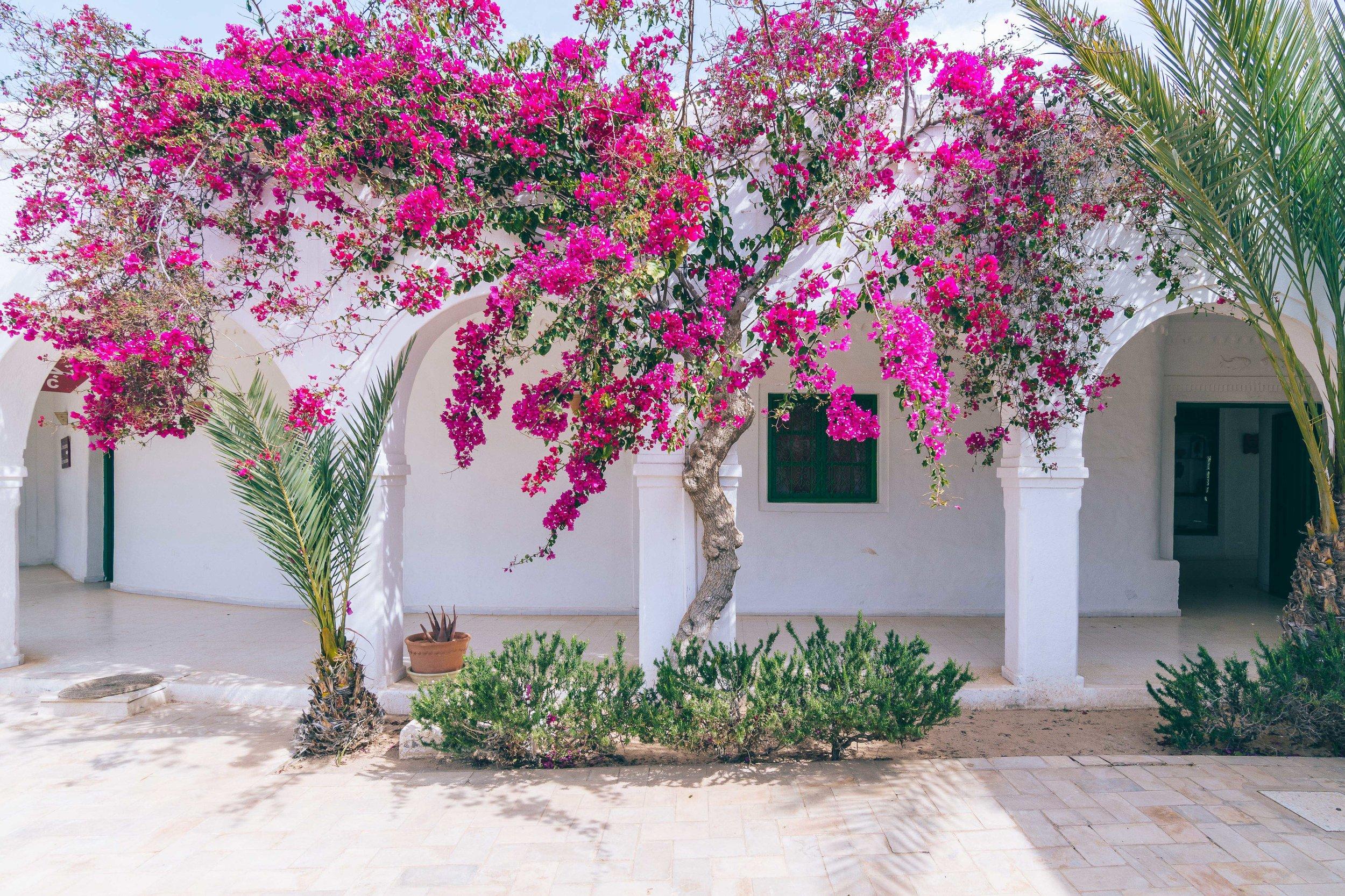 Radisson Blu Djerba - Marc Nouss Photography-34.jpg