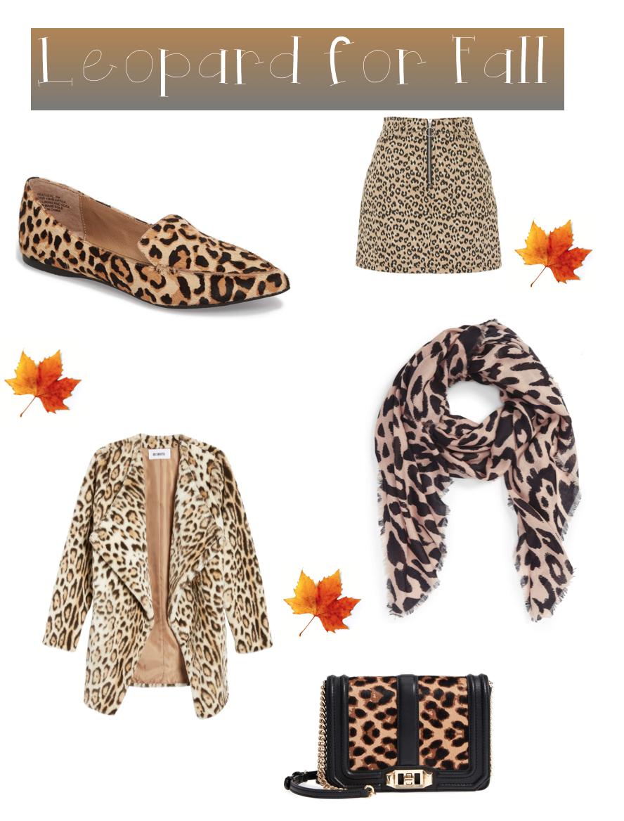 Leopard Essentials.png
