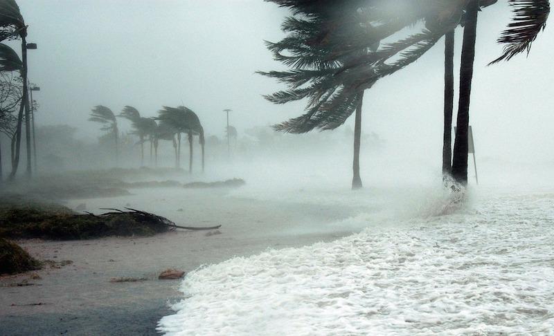 Hurricane Pic.jpg