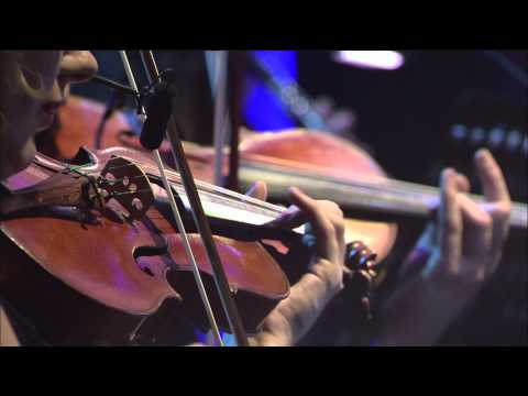 Aristo Strings NYC