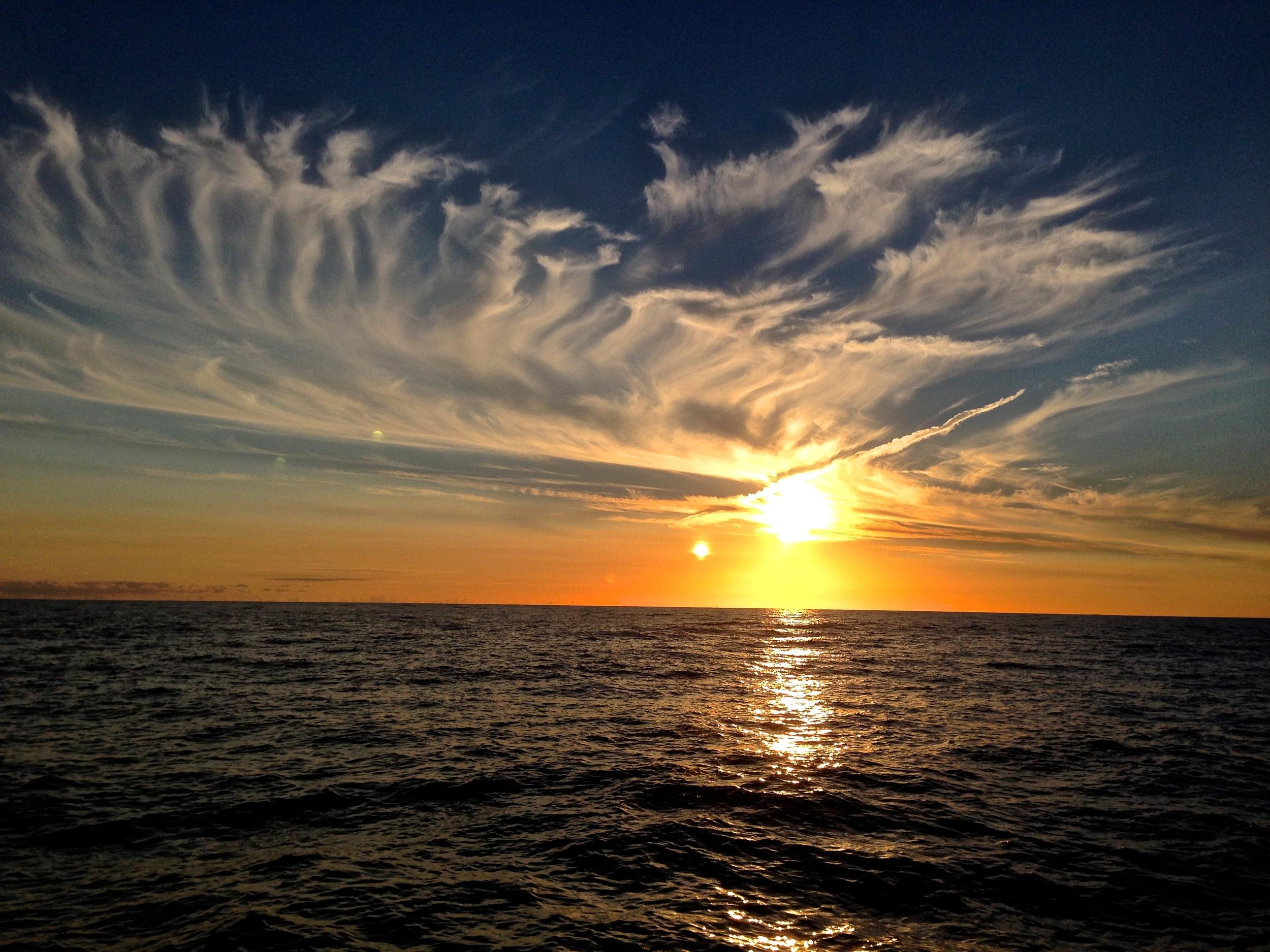 offshore-sailing-tasman-sea