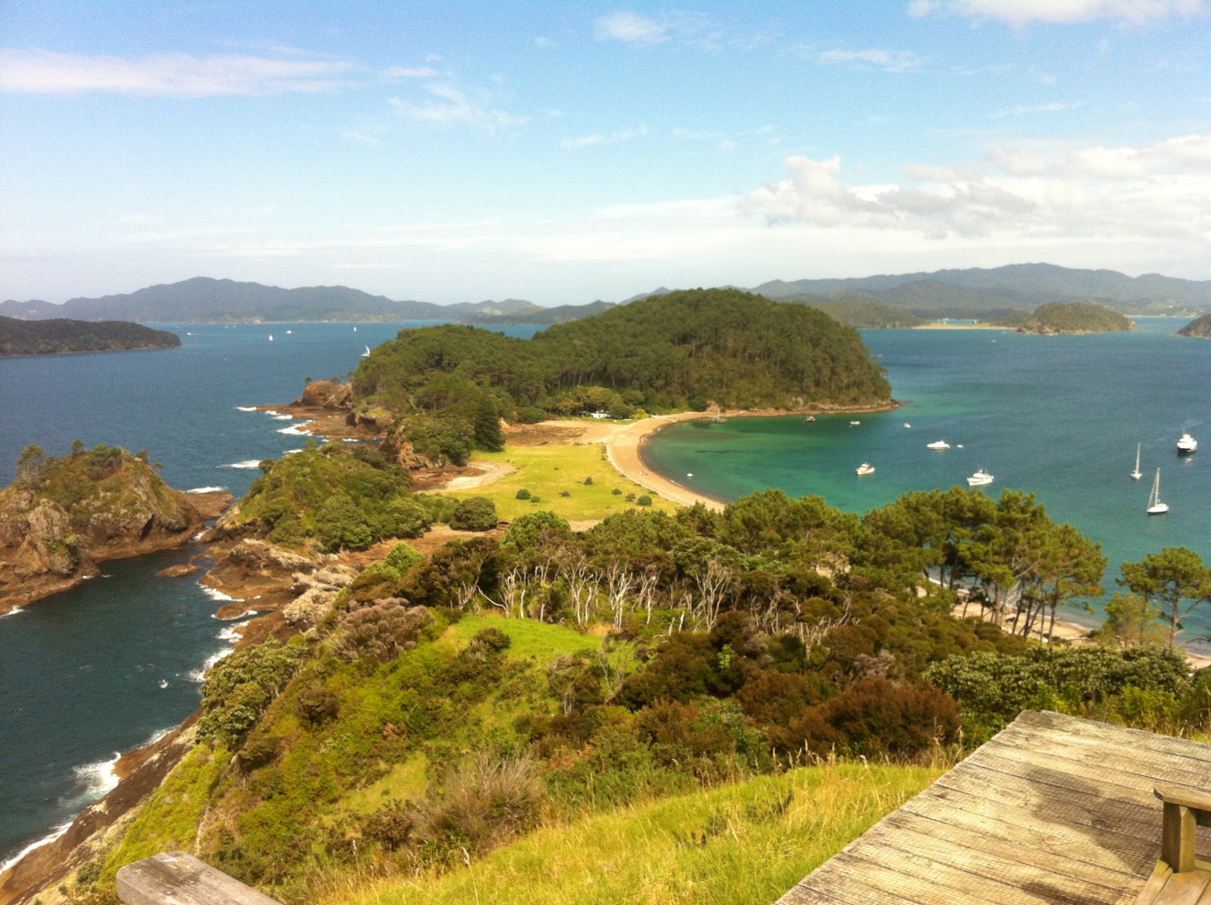 Roberton Island, Bay of Islands where the snorkelling in three large rock pools is amazing