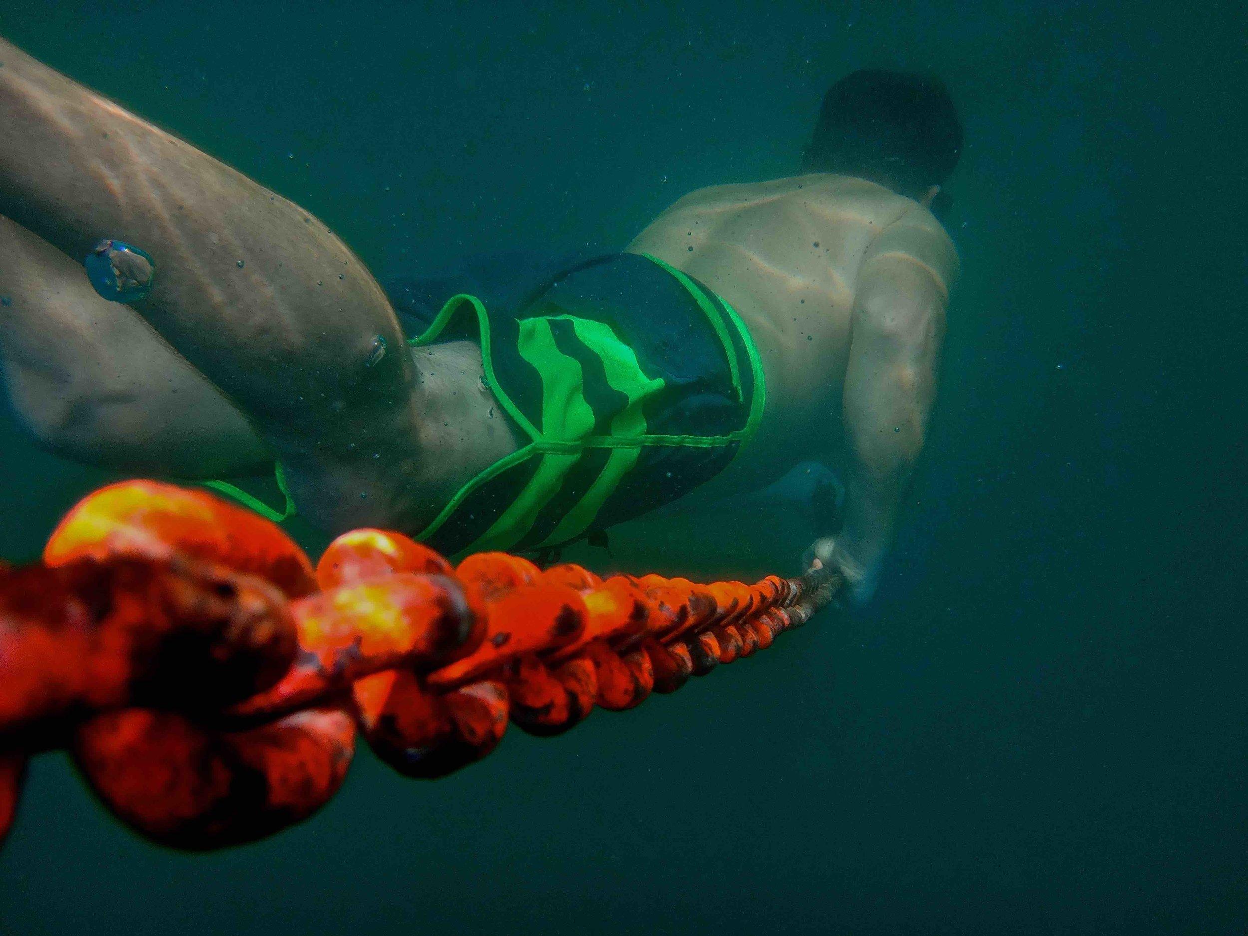 Nick Moloney free diver