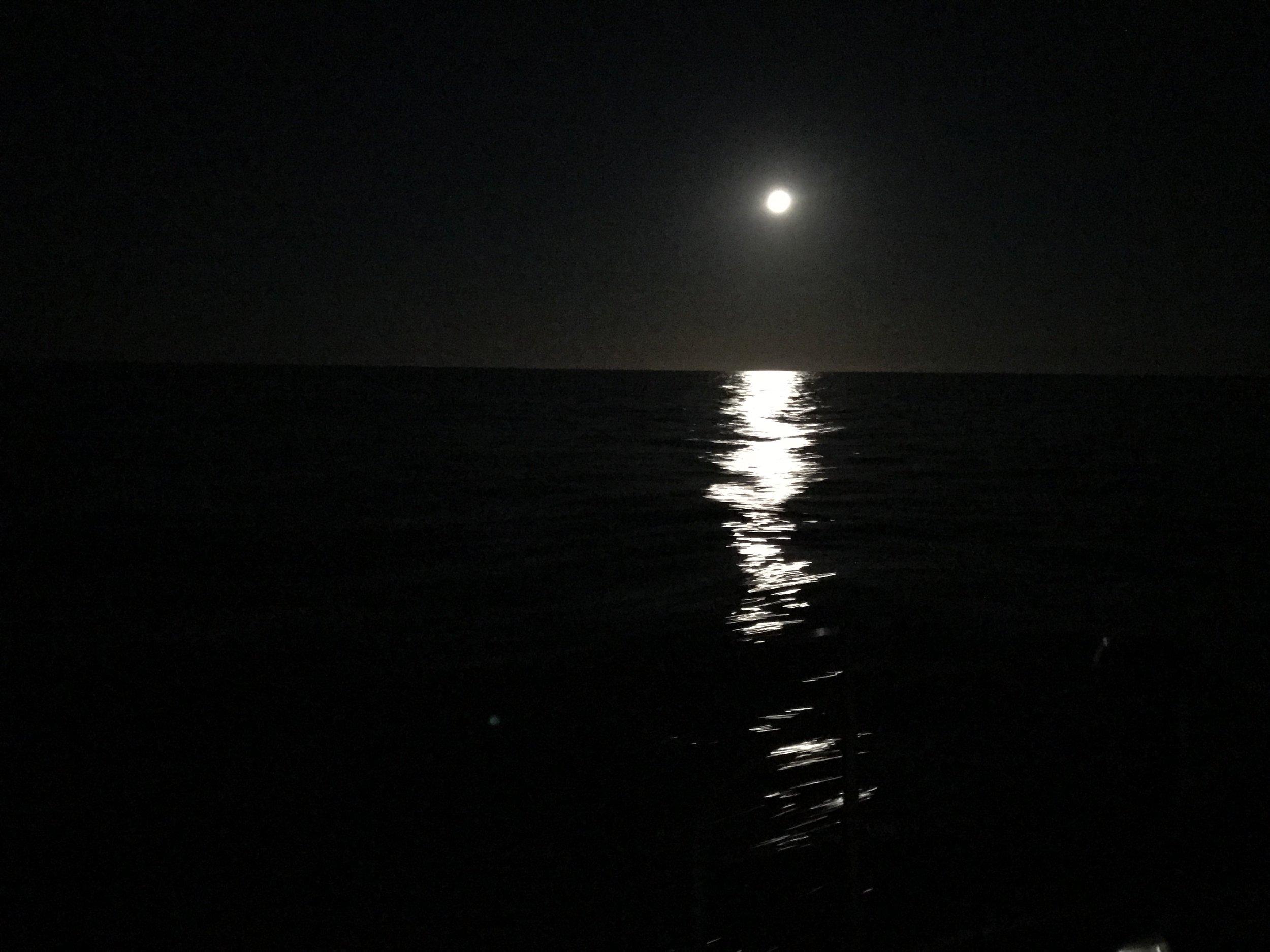 Night sailing on the Tasman Sea