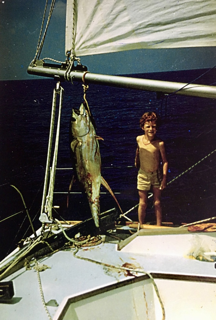 Catamaran Catalyst Dennis Webster