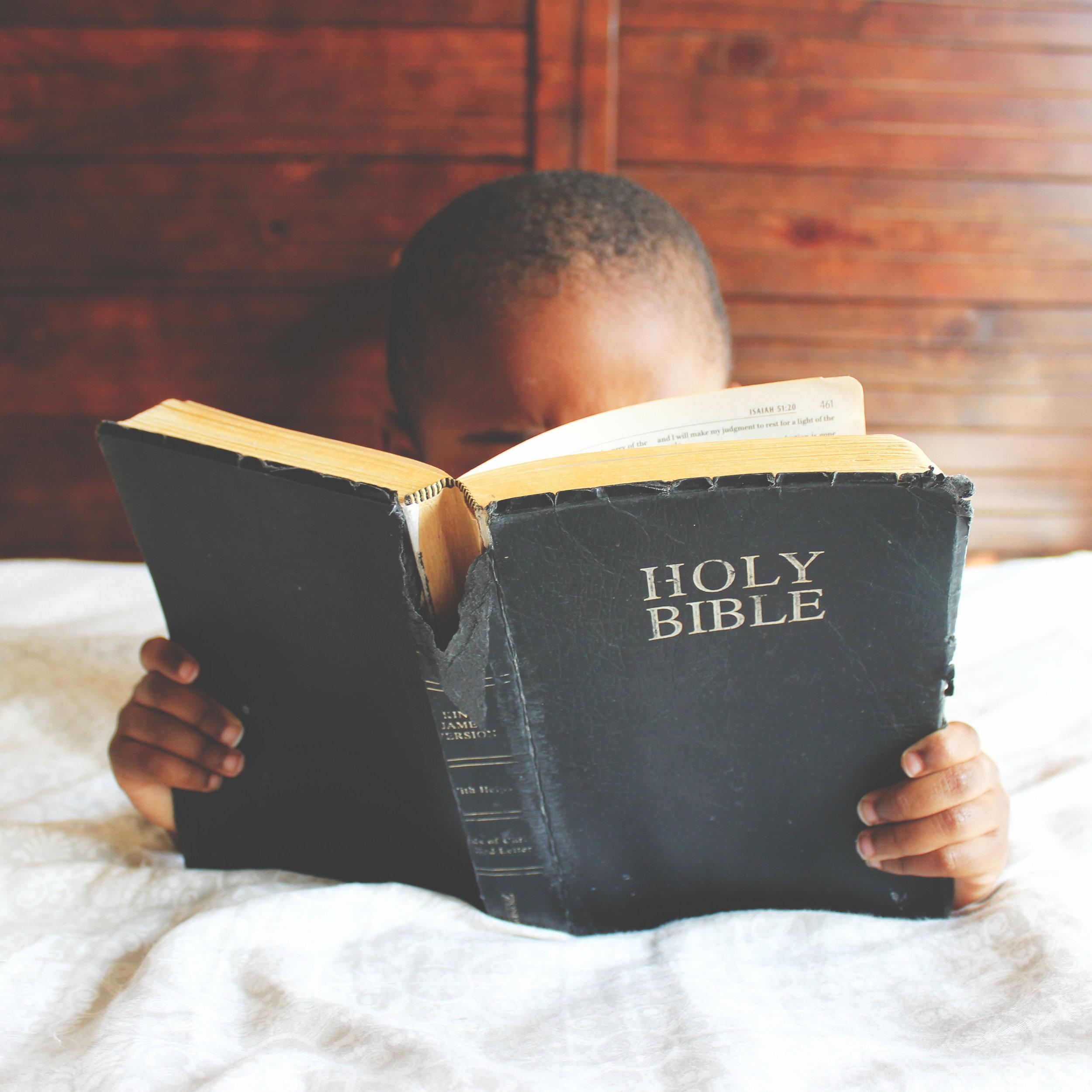 MV Kids Bible.png