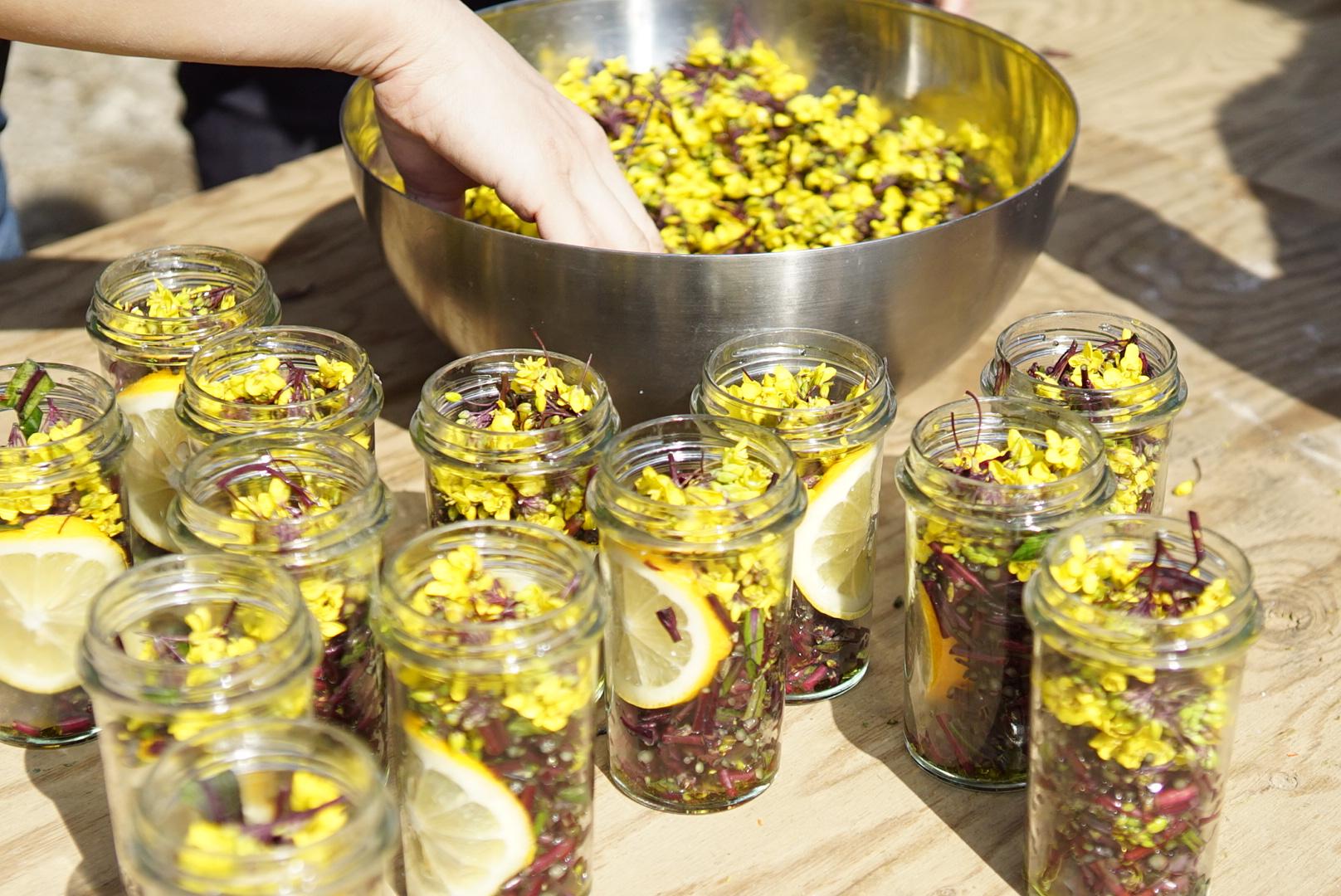 2.CANNINGキャニング - ・農園の炊事場で調理、瓶詰め。・オイル漬け、コンポート、ソース、コンフィチュール、おかずの素などオリジナルレシピを予定。・自分たちで育てた野菜はもちろん、農園の畑の野菜や地域の食材を使った内容も。