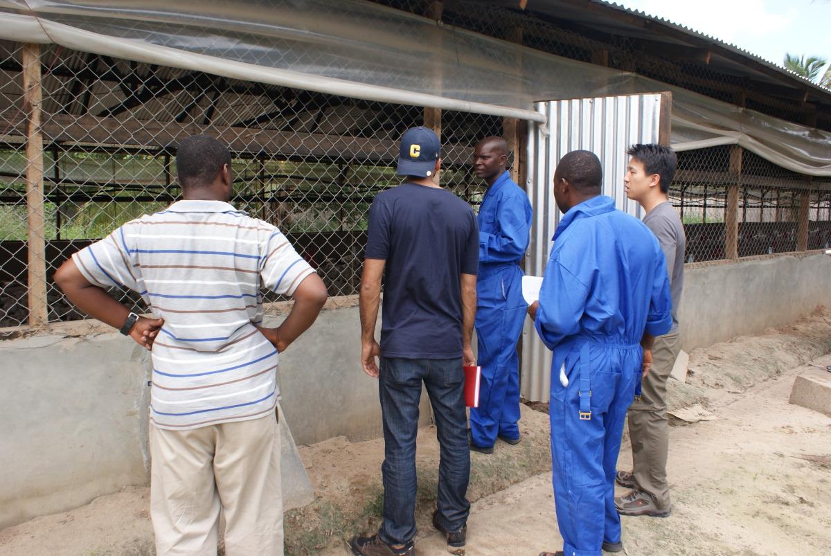 Chanika Poultry Farm outside Dar es Salaam