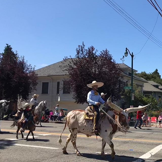 Most eclectic 4th of July at the Alameda Parade ... Longhorn Cowboys, Sikh Motorcycle Club, and a happy little Bob Ross float