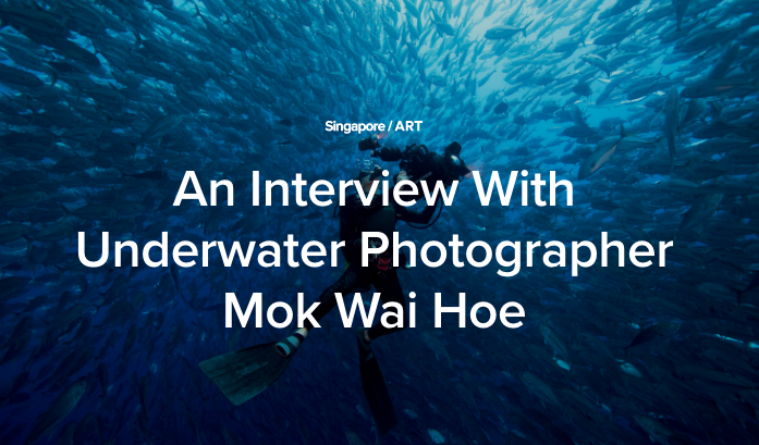 - Meet award winning photographer Mok Wai Hoe, who is also a businessman running an industrial electrical business in Singapore. Despite a hectic work life, he flies around the world to take serious underwater photography. His photos cover creatures such as Pacific Manta Ray from Mexico, sardines from the East Coast of South Africa and sharks from the Bahamas. He shares his journey into the world of photography, and the tricks and difficulties in taking pictures under the ocean.