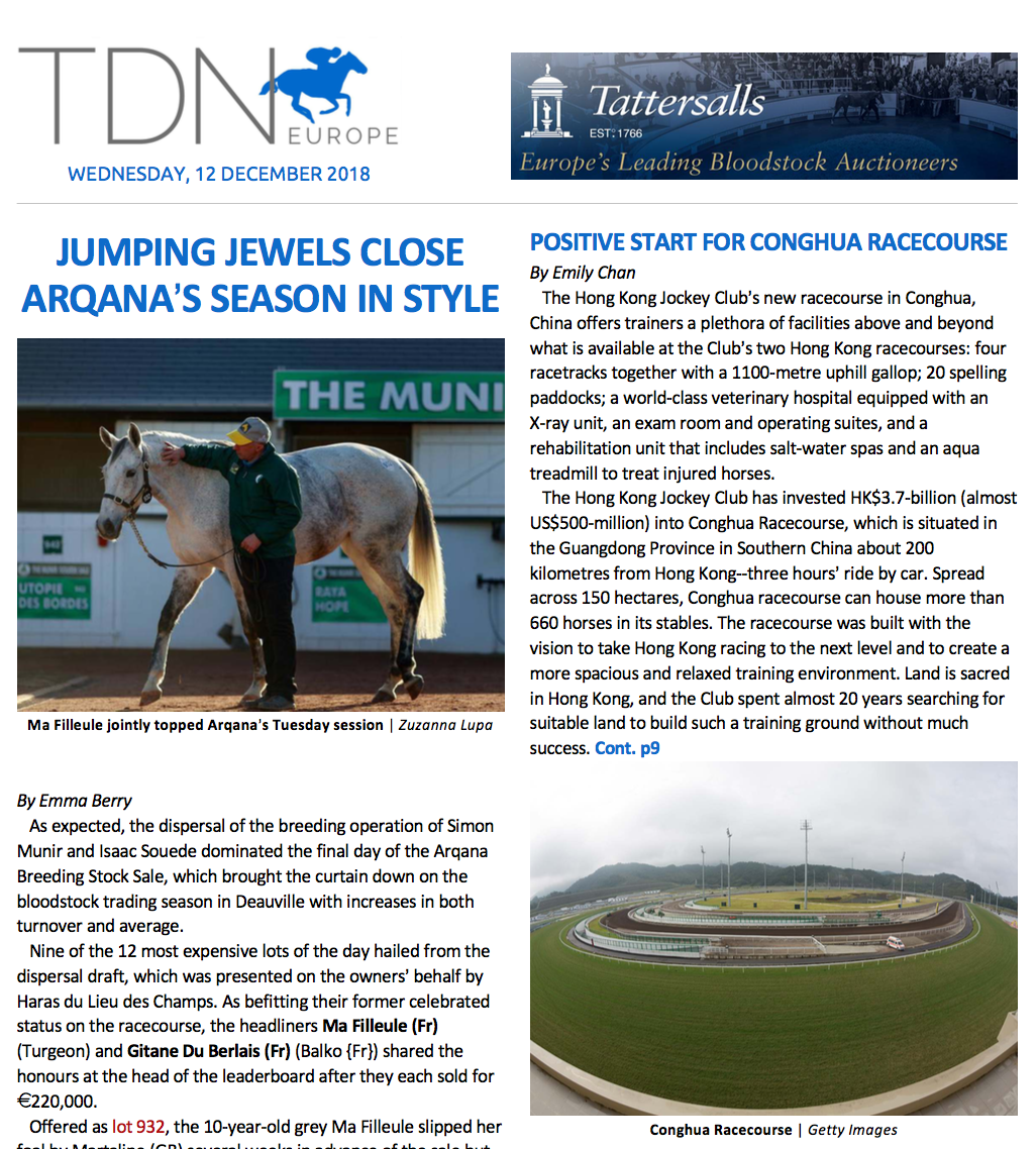 TDN International - 2018.12.12