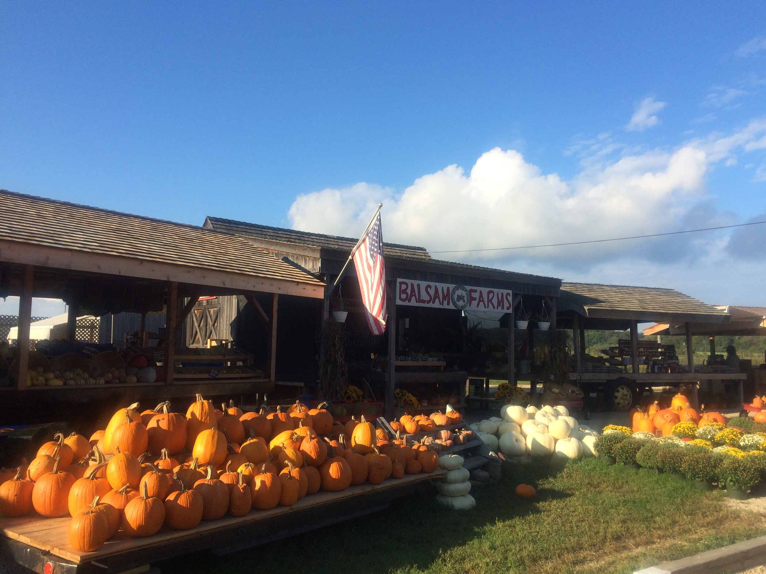 Balsam Farm. A must see destination while visiting. Abundant with organic fall harvest.