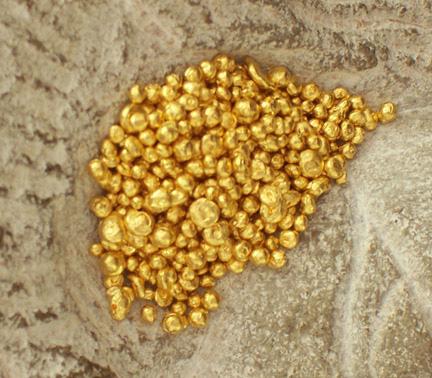 Snag ad Gold granules copy.jpg