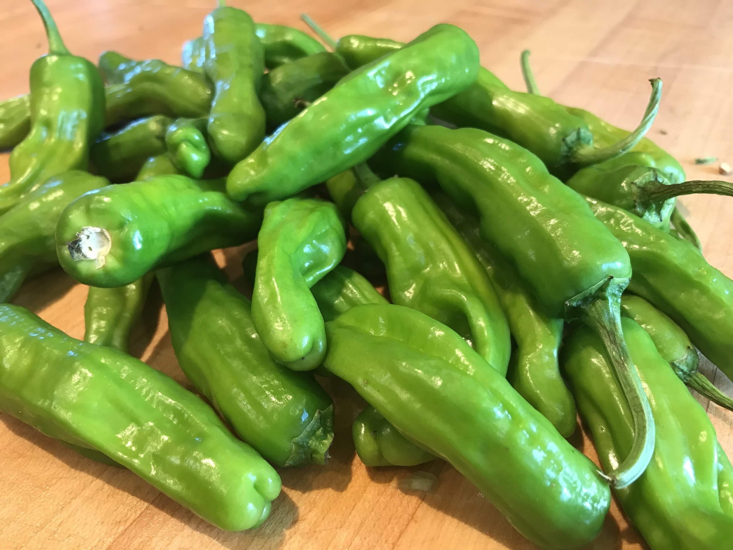 Shishito peppers in the raw state