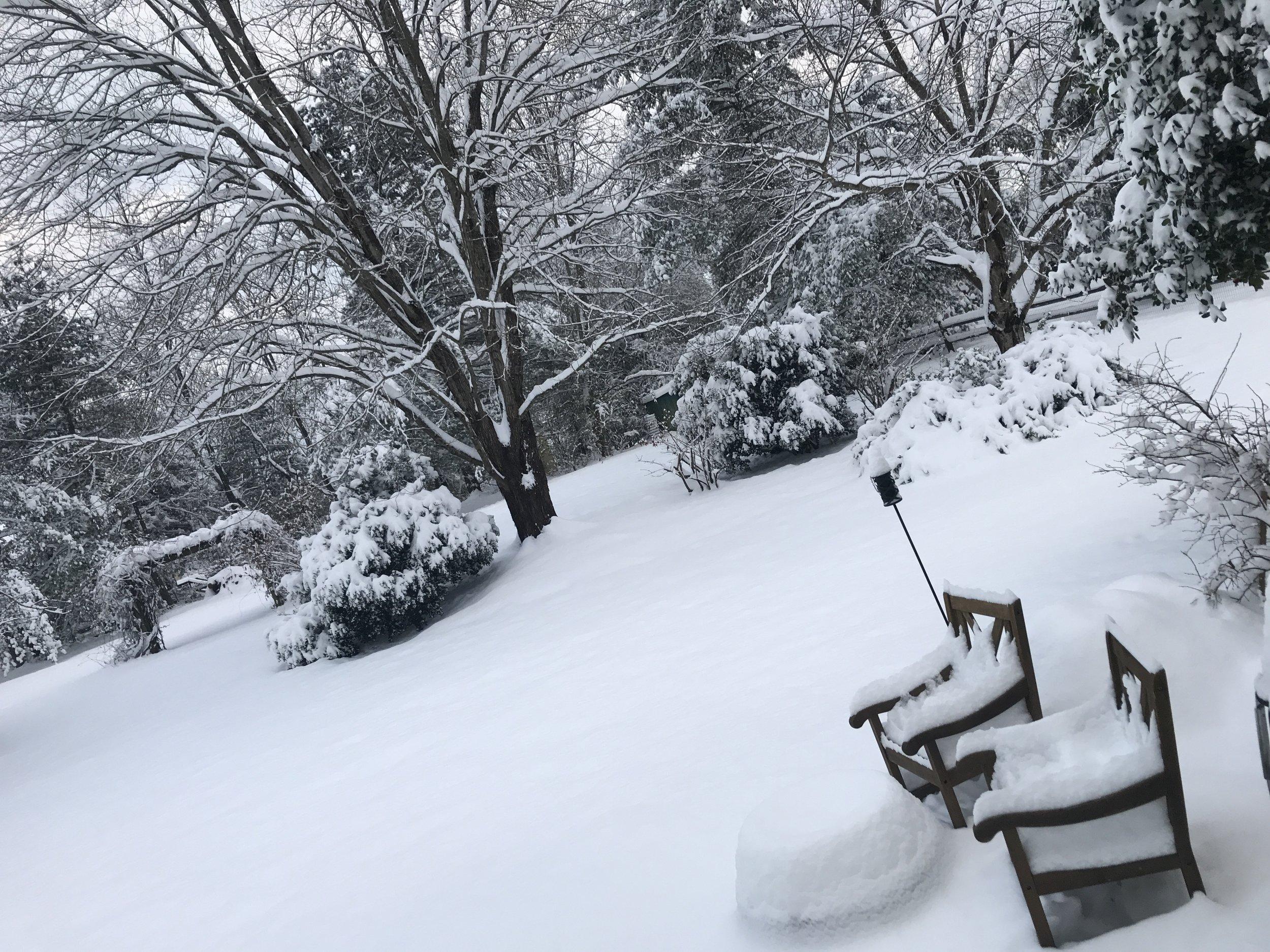 December 2018 snowfall