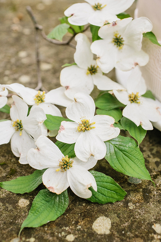 HNP-Modern-Fairytale-Spring-Wedding-Styled-Shoot_004.jpg