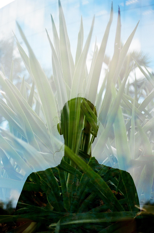 sauphia-germain-film-31.jpg