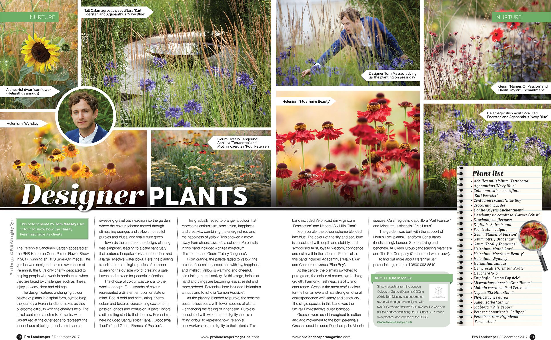 Tom Massey Designer Plants