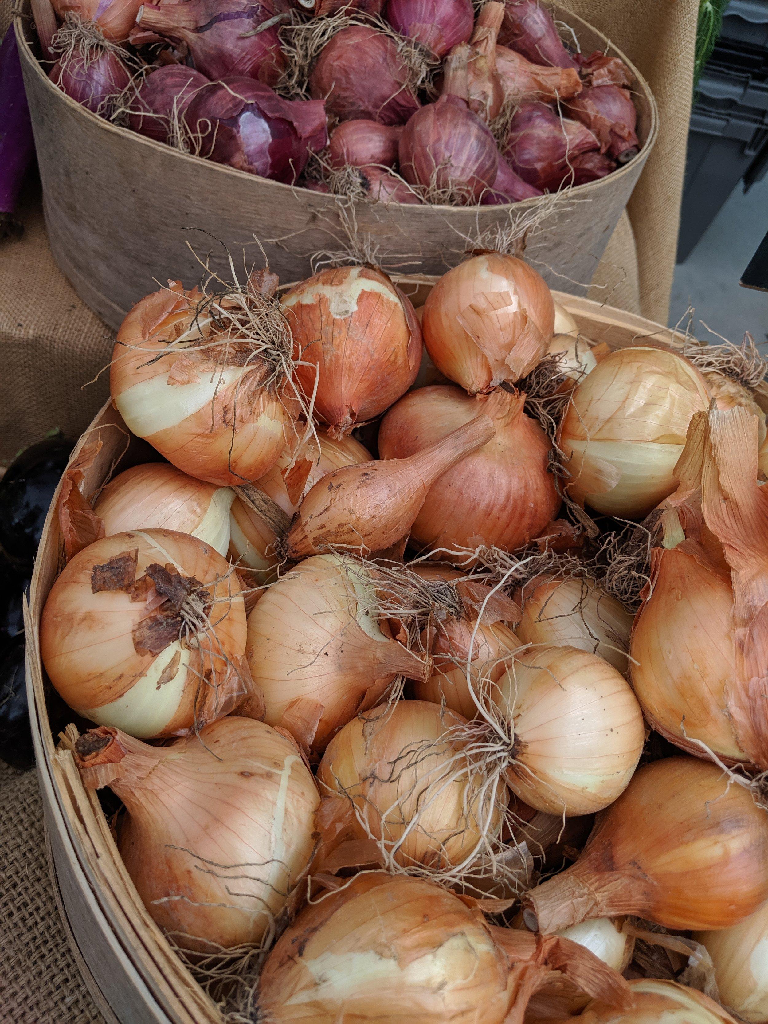 Market Shopping List - 2 yellow onion1 head garlic2 bell pepper2 large Italian eggplant3 pints cherry tomatoes 1 zucchini1 squash2 large tomatoes1 lb okraMango Thai Basil preserves from Piedmont ProvisionsBasil, thyme, rosemary, oregano (if available)