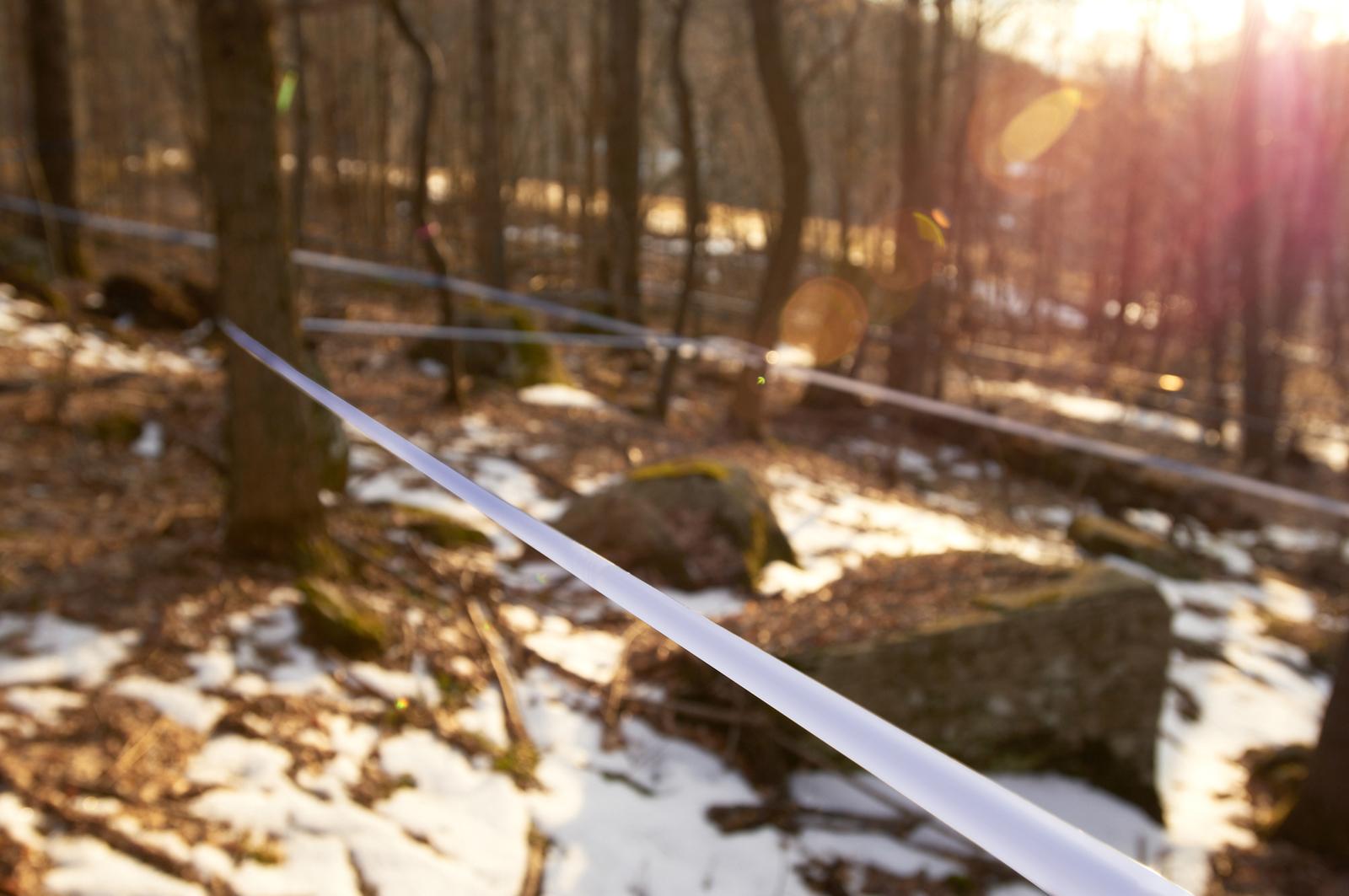 Maple Syrup Catskill Mtn-033.jpg