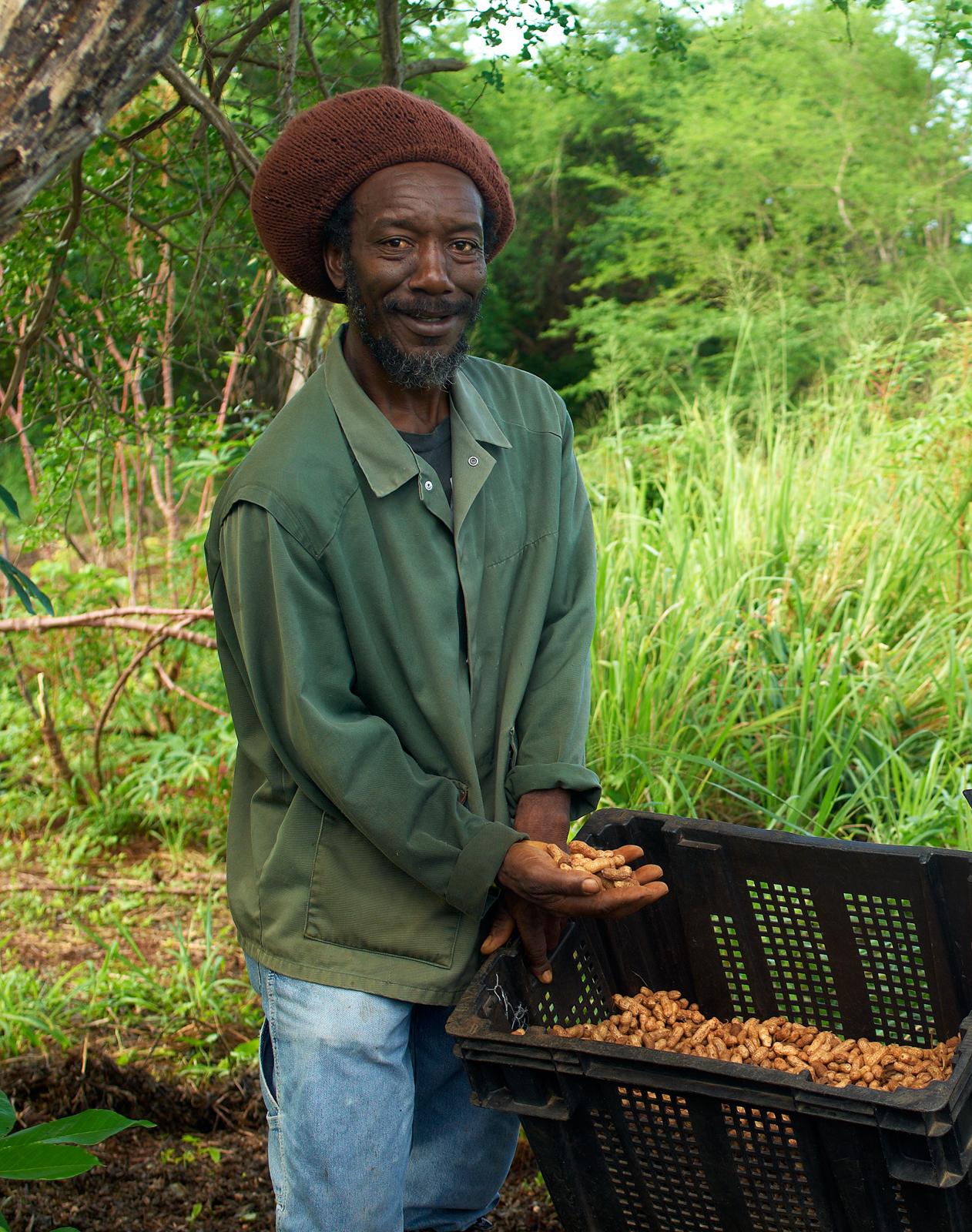 Organic Farm-038.jpg