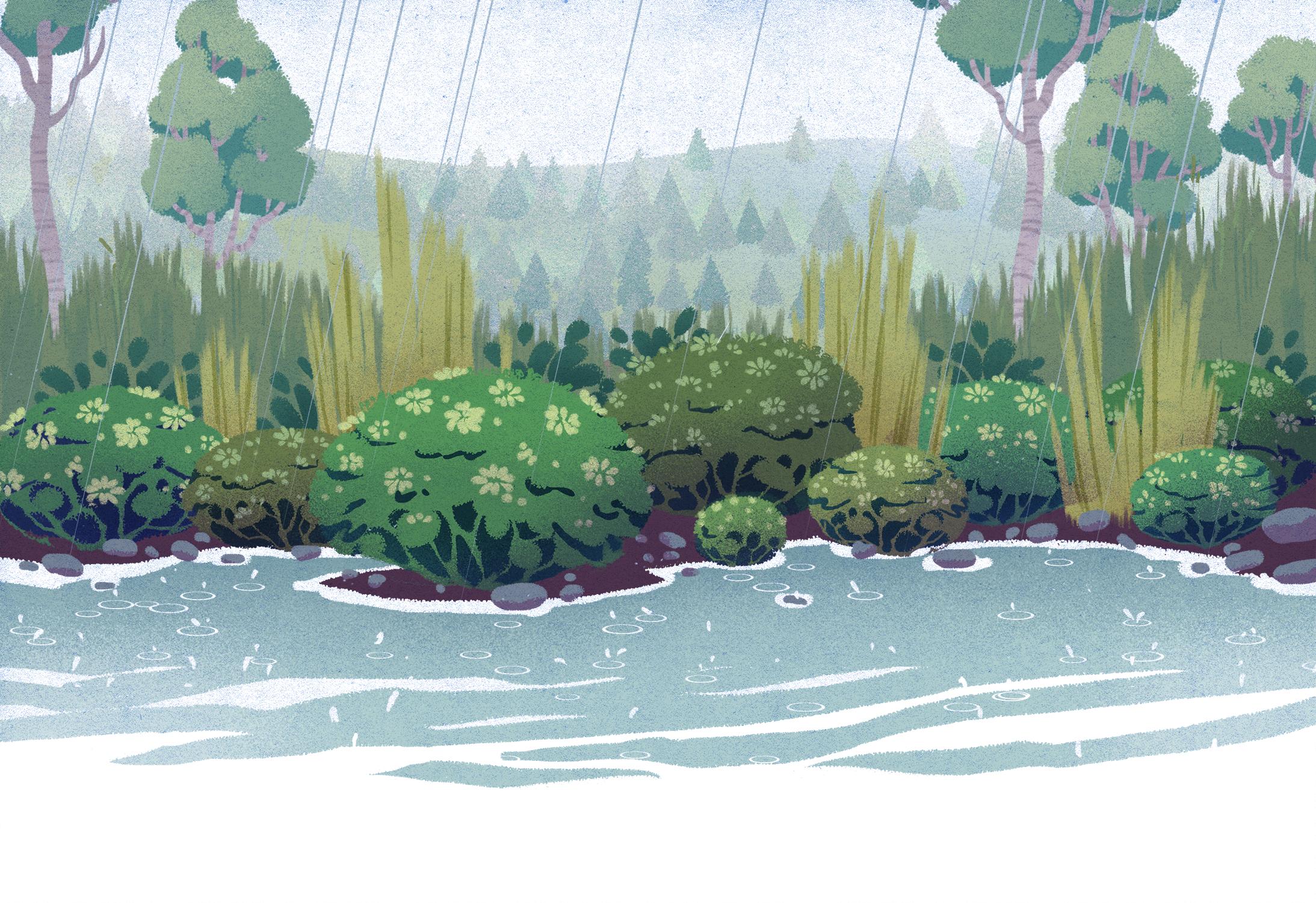 nature rain gardens copy.jpg