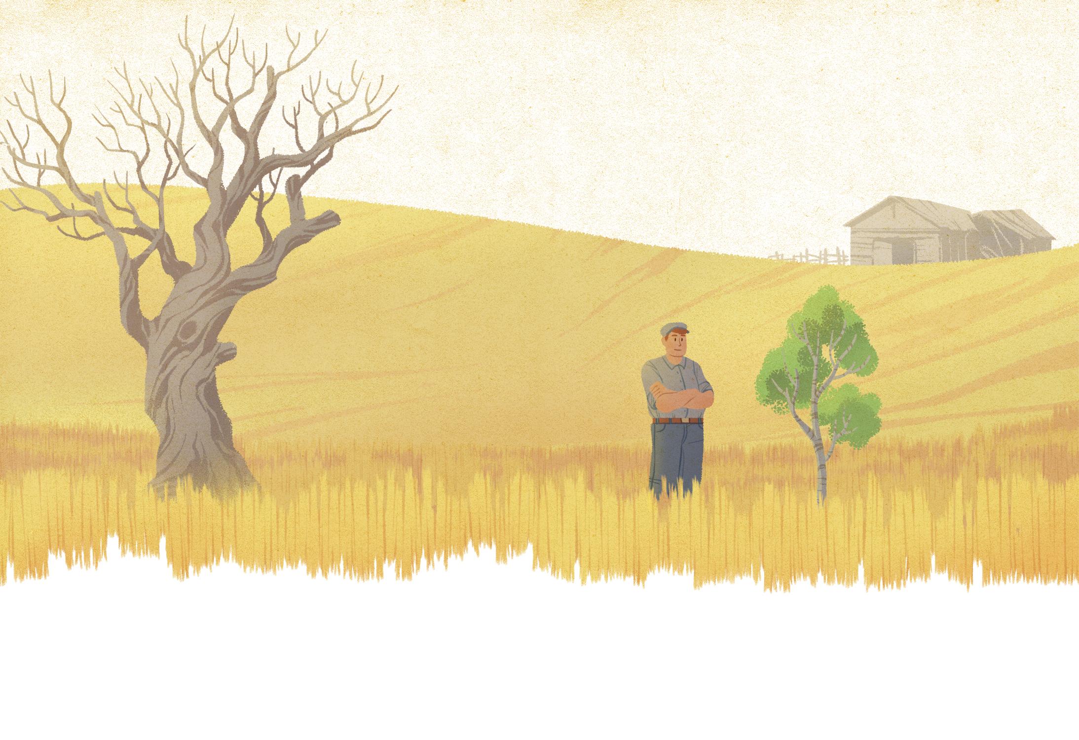 old farmland copy.jpg