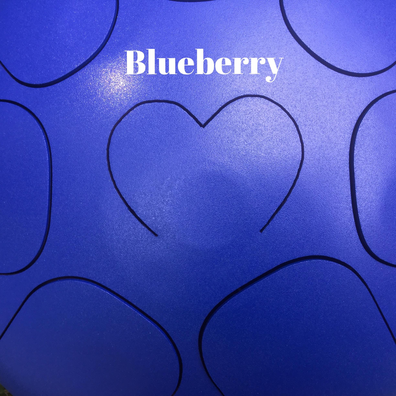 steel tongue drum Blueberry.jpg
