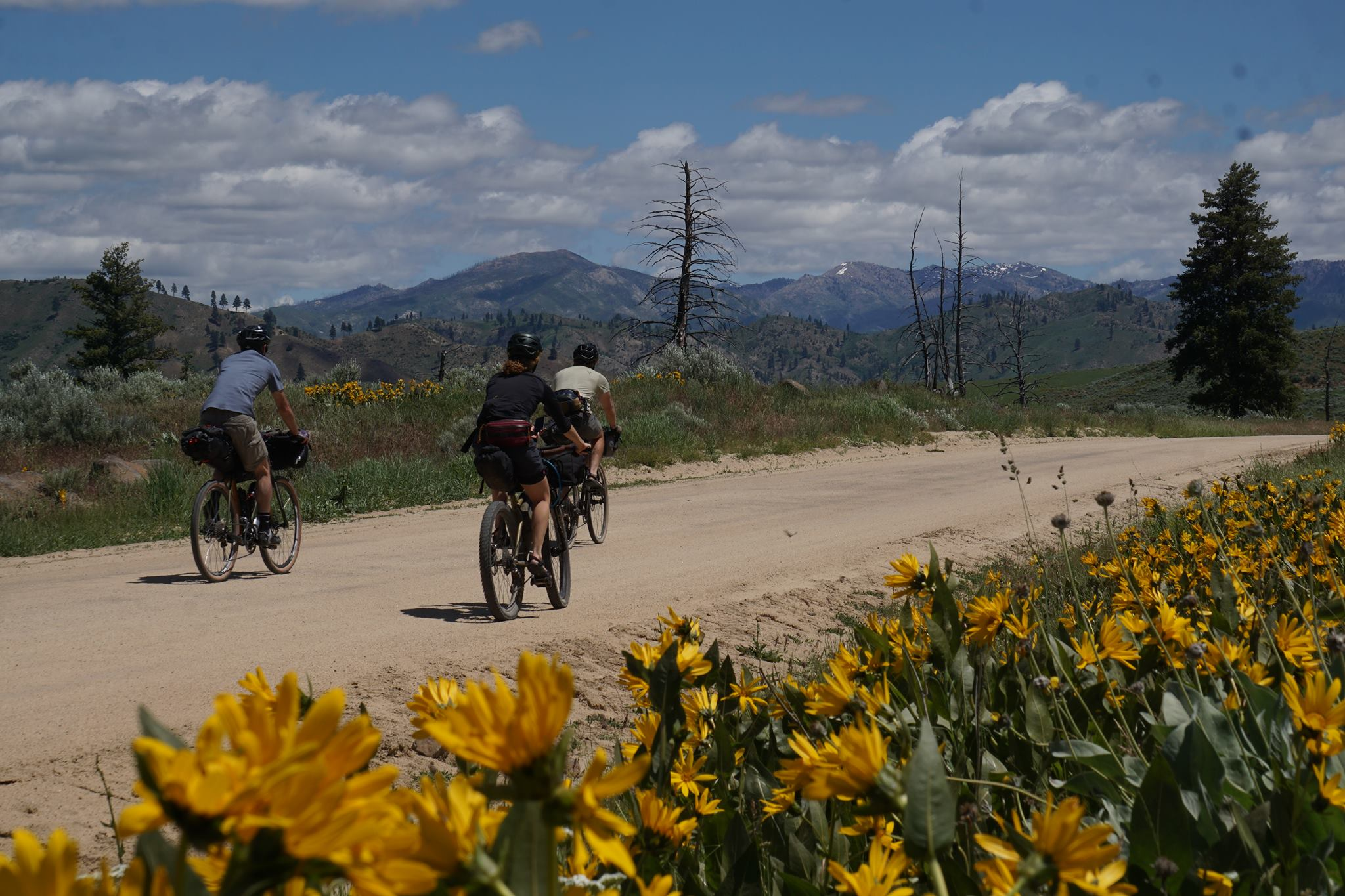 Bike Traveler's Bazaar - Tuesday, May 14 from 6:30-8:30 PM at Sunset Park. Looking to get started touring or bike-packing? Here's an opportunity to pick up a bike, parts, or gear to help you get out there! Maybe you're a seasoned rider with some unused equipment collecting dust. Bring your gear down to Sunset Park to buy/sell/trade. Follow the Facebook event for more information.