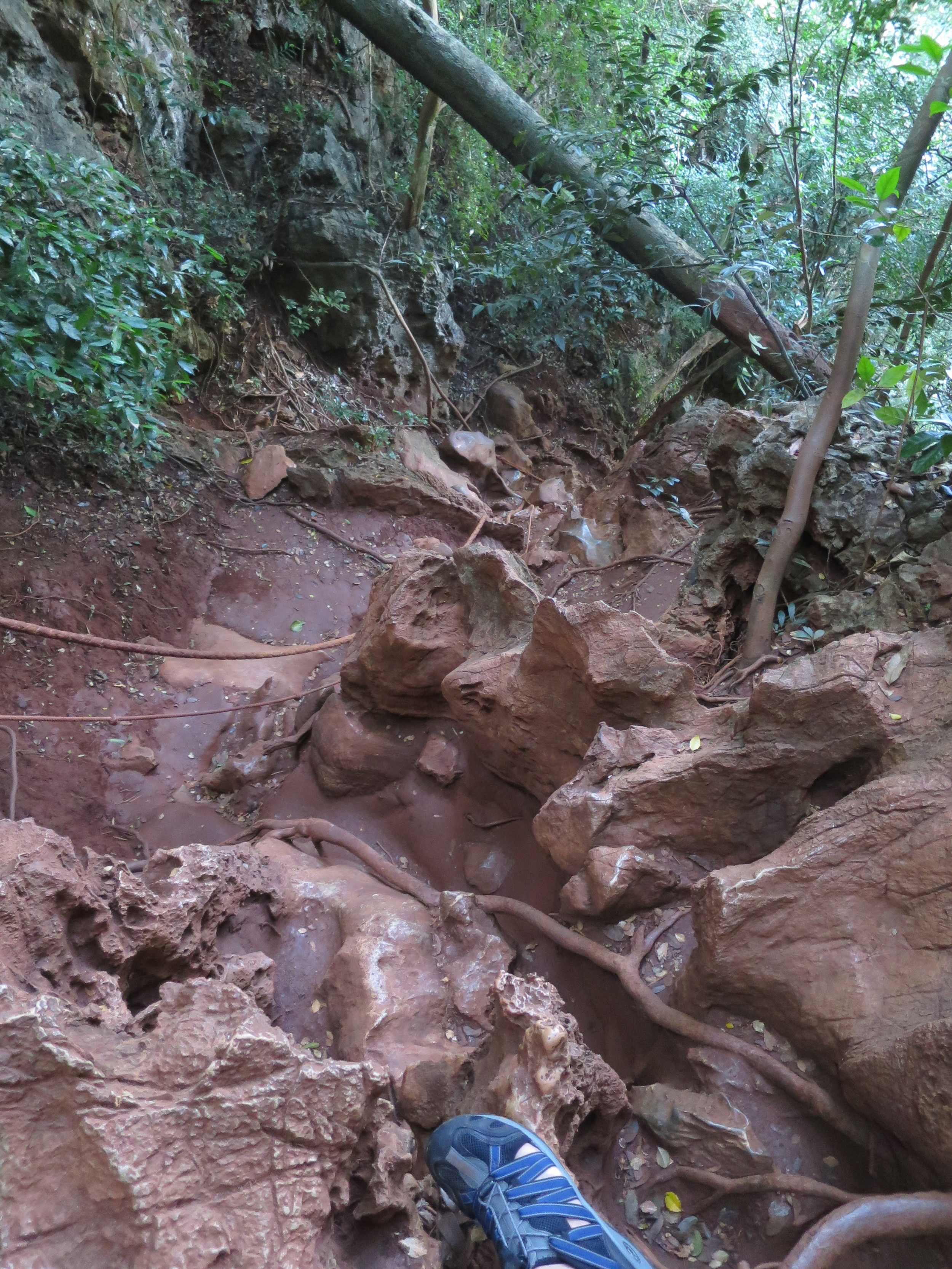 The trail to the viewpoint