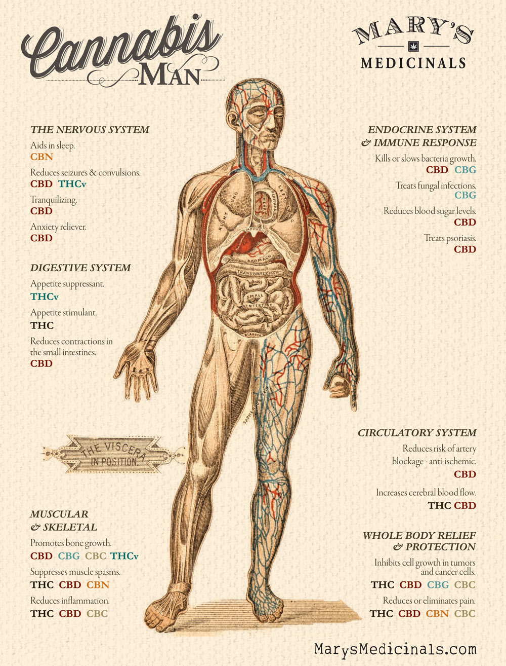 Poster from www.MarysMedicinals.com