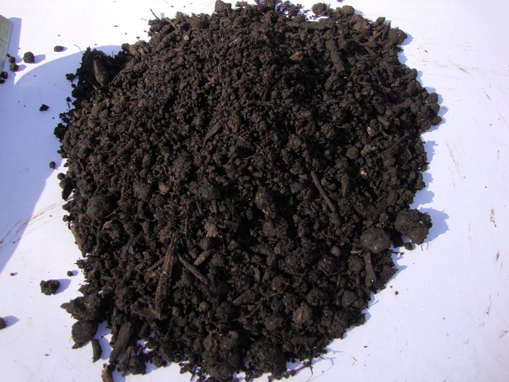 Compost-Soil.jpg