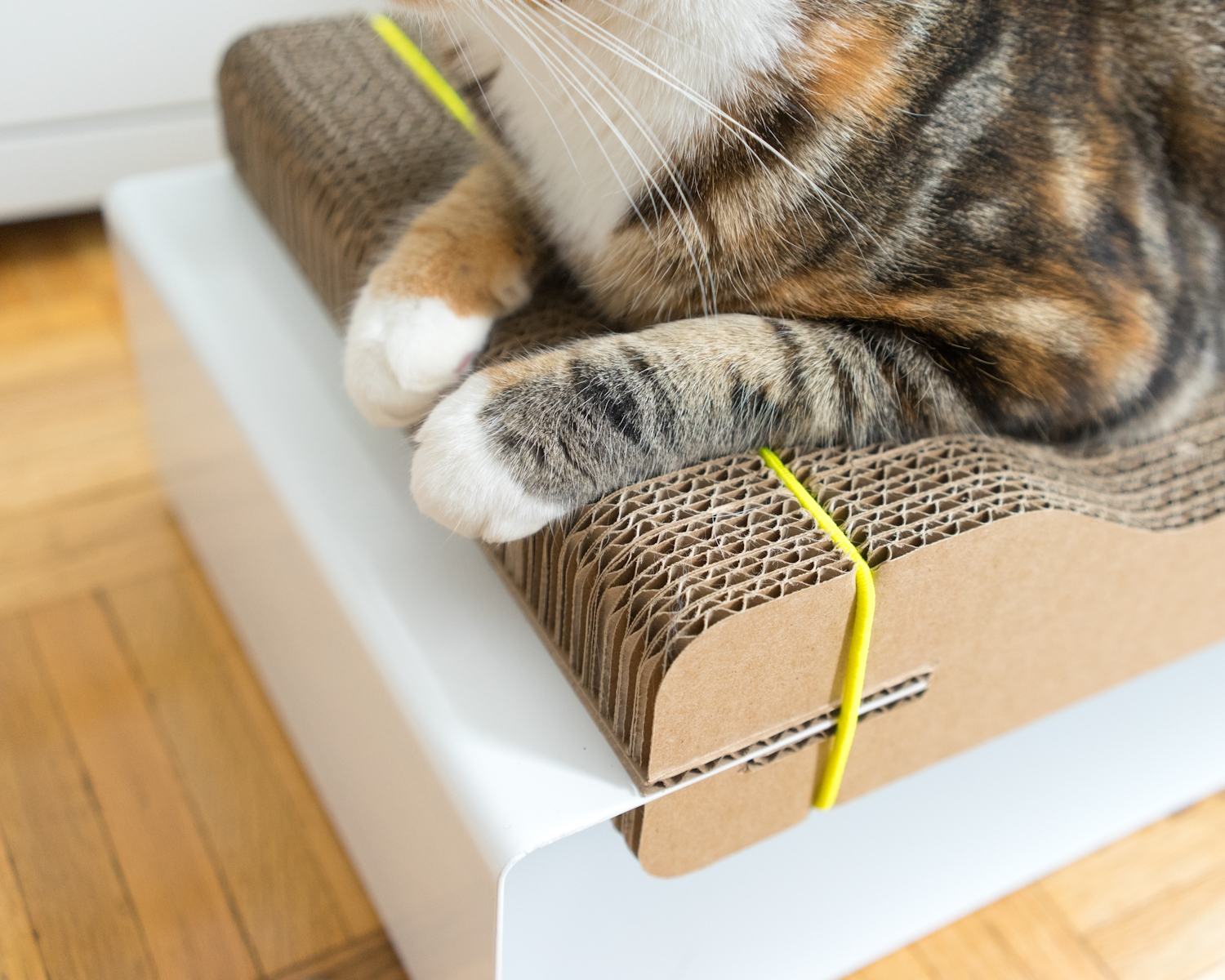 ELASTIC - Our patent pending elastic strap design means the individual cardboard layers are not glued together. This makes for a simpler product with less waste. You can even switch or move damaged layers to keep The Corr Lounge looking like new.