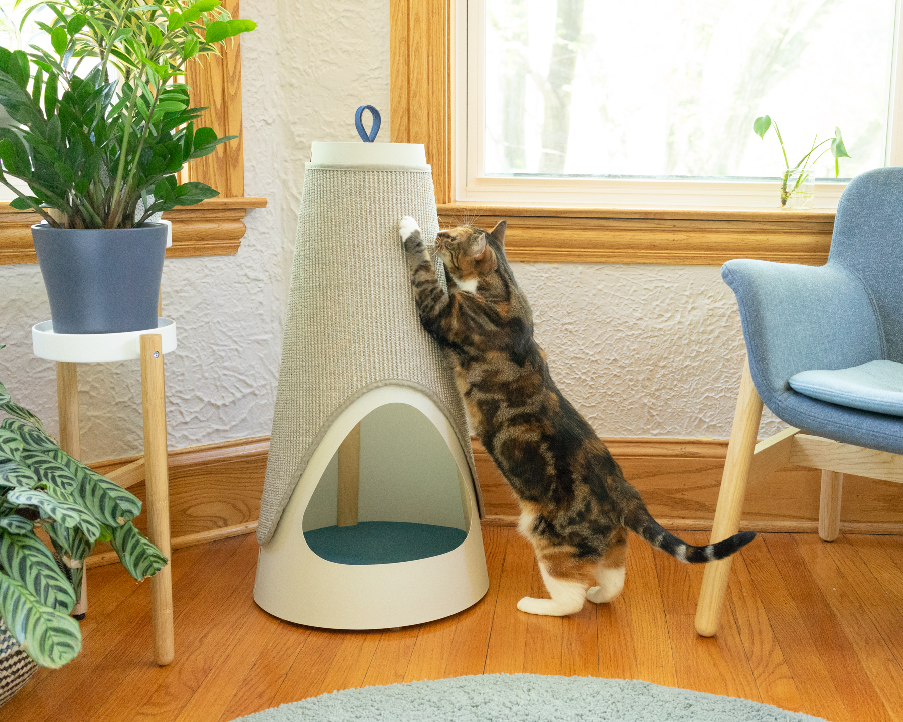 TALL & STURDY - In nature, cats scratch trees because they're tall, and don't tip or wobble. At home, the next best thing is your favorite armchair. We made the Cone to give cats a better option. At over 30 inches tall, the Cone lets cats fully stretch out when they scratch, and the weighted base makes it super stable.