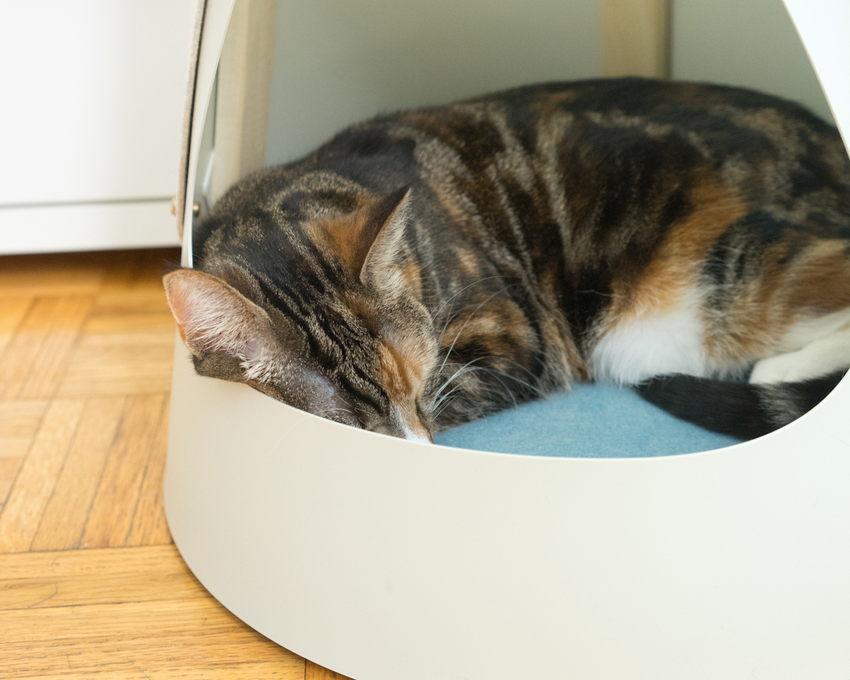 NEXT-LEVEL NAPPING - The Cone has the perfect sleeping nook for your kitty, which is like getting two products for the price (and space) of one! Elevated off the floor, with a soft felt pad, it's sure to be the most coveted seat in the house. For cats who do next-level shedding, the pad is removable and easily cleaned.