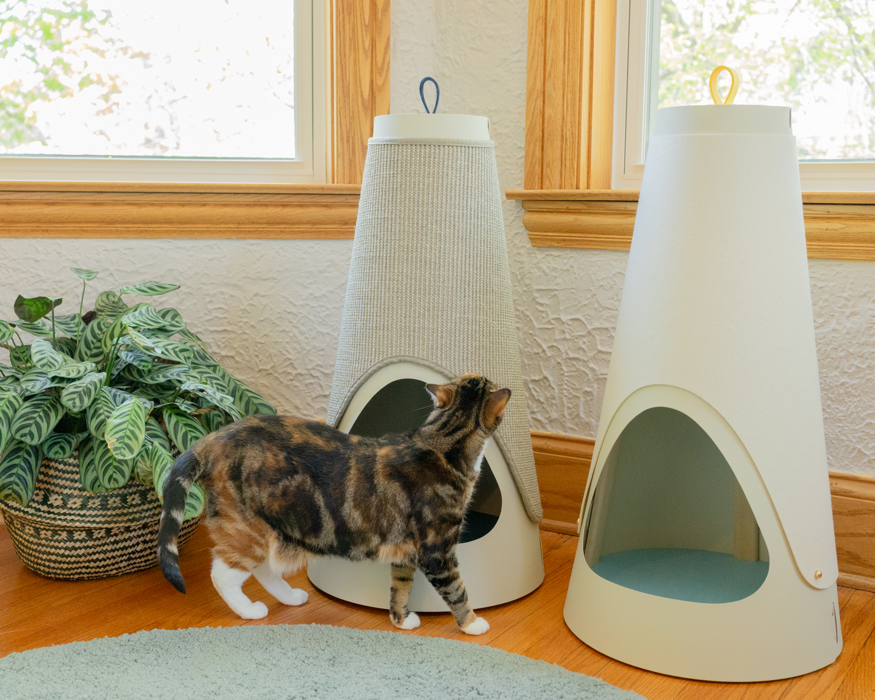 THE BEST SCRATCH FOR YOUR CAT - Cats can be picky, which is why we're offering the Cone with a choice of scratching wraps. Our felt wrap is soft with just a bit of texture, great for cats who like to scratch softer stuff like plush carpets and drapes. Our 100% natural sisal wrap is super strong and durable with lots of texture. If your kitty is shredding the furniture to bits, this is the one for them!