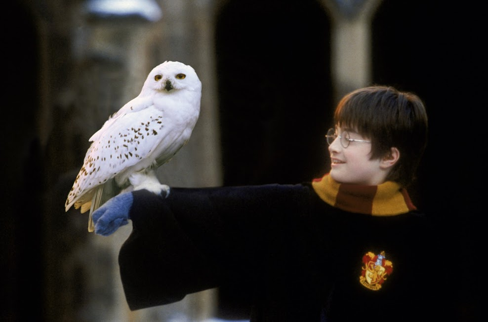The Czech National Symphony Orchestra will play a live accompaniment to Harry Potter & The Philosopher's Stone at Cardiff's St David's Hall in September, 2019.