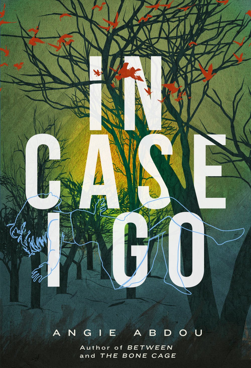 Angie Abdou.  In Case I Go . Arsenal Pulp Press. $17.95, 272 pp., ISBN:978-1551527031
