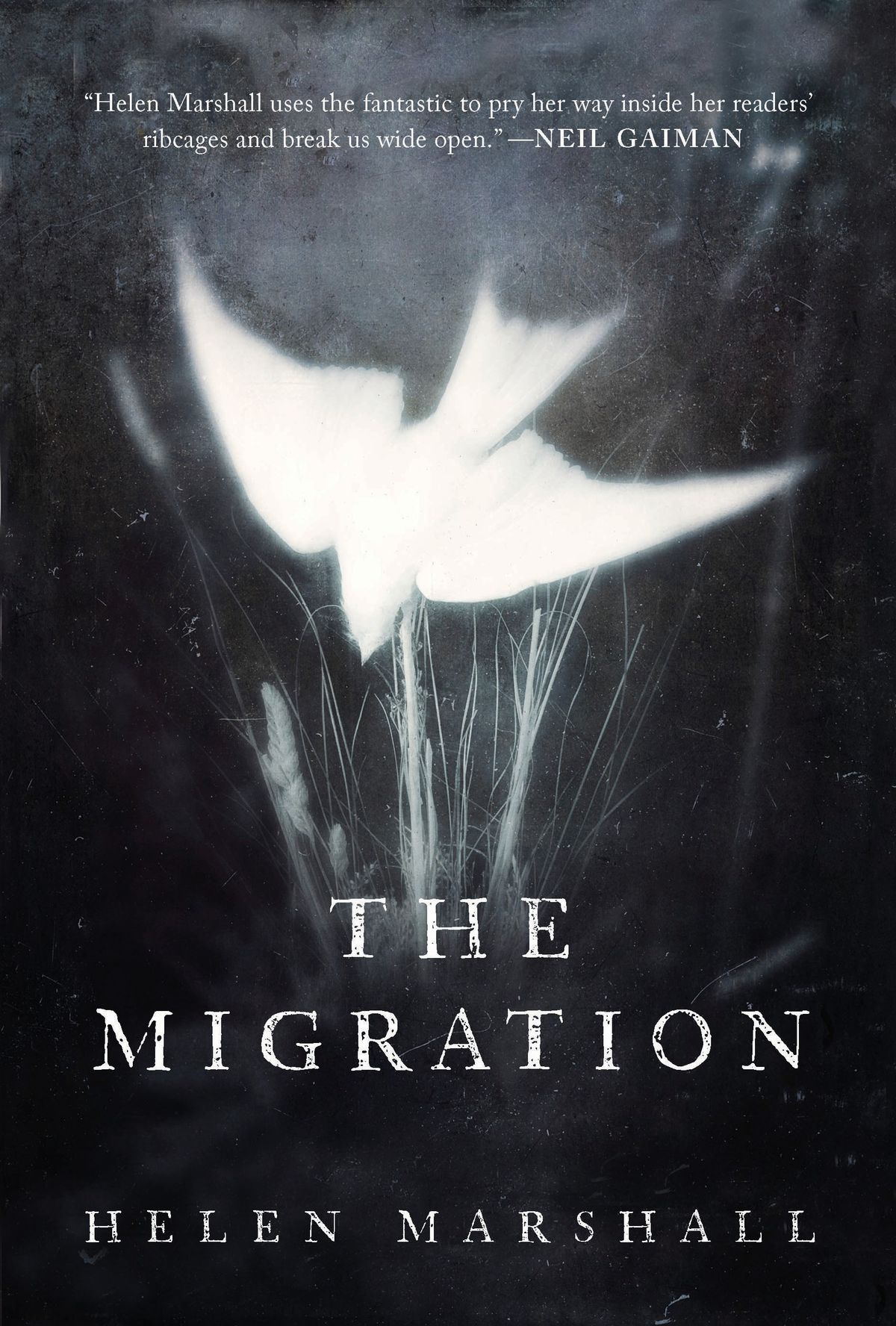 Helen Marshall.  The Migration.  Random House Canada. $24.95. 304 pp., ISBN: 9780735272620
