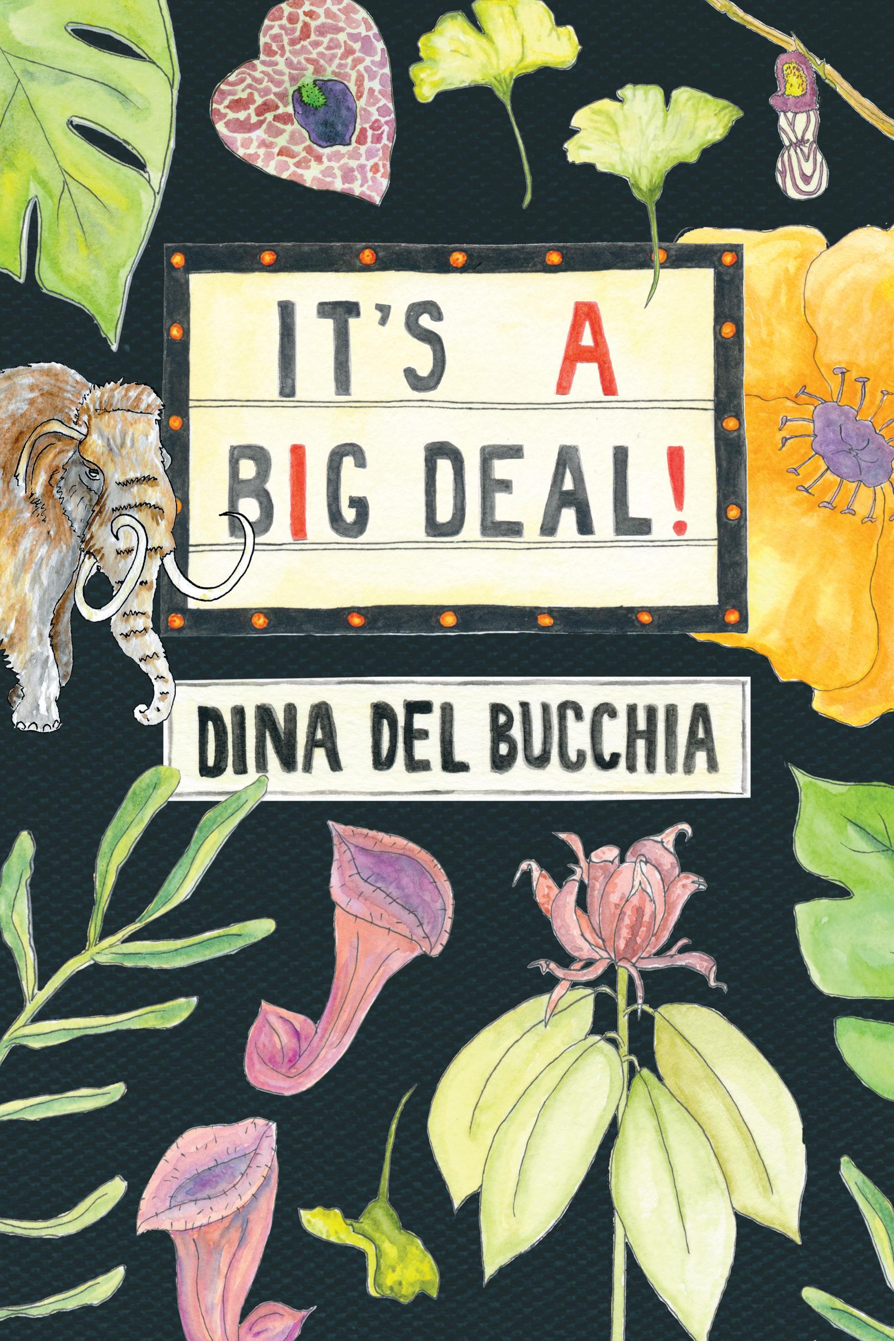 Dina Del Bucchia. It's a Big Deal. Talonbooks. $16.95 128 pp., ISBN: 9781772012255