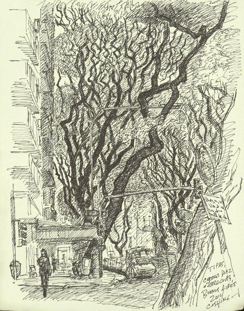 """ trip trees on Calle Coronel Diaz"". 12 x 9""  $350.00 (framed)"