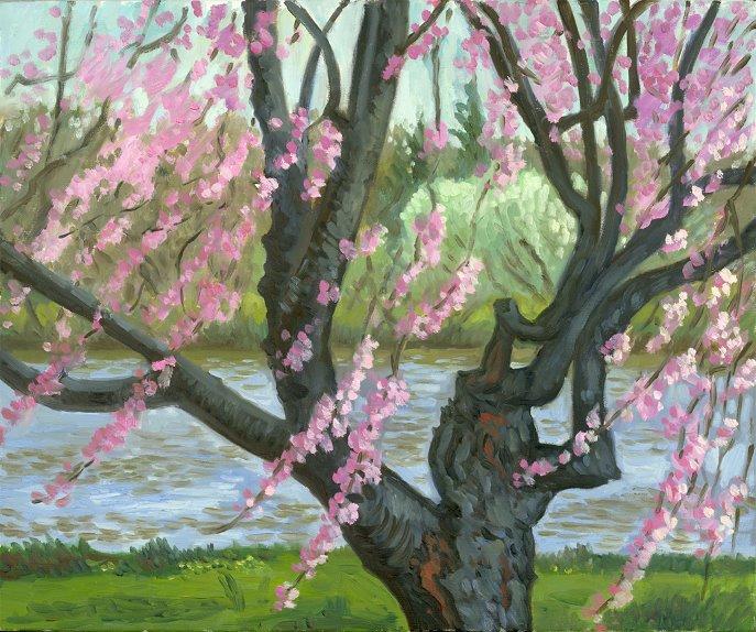 """Pink Streamers, Fairmount Park""  20 x 24"" (sold)"