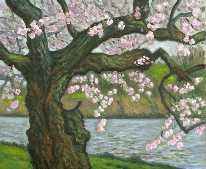 """""""Pale Blossoms, Fairmount Park""""  20 x 24"""" (sold)"""