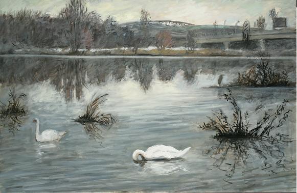 """Feeding Swan, Tinicum Marsh""  32 x 50"" $2500.00"