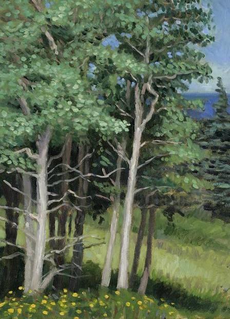 """Beeches Near Keels, Newfoundland""  16 x 12"" (sold)"