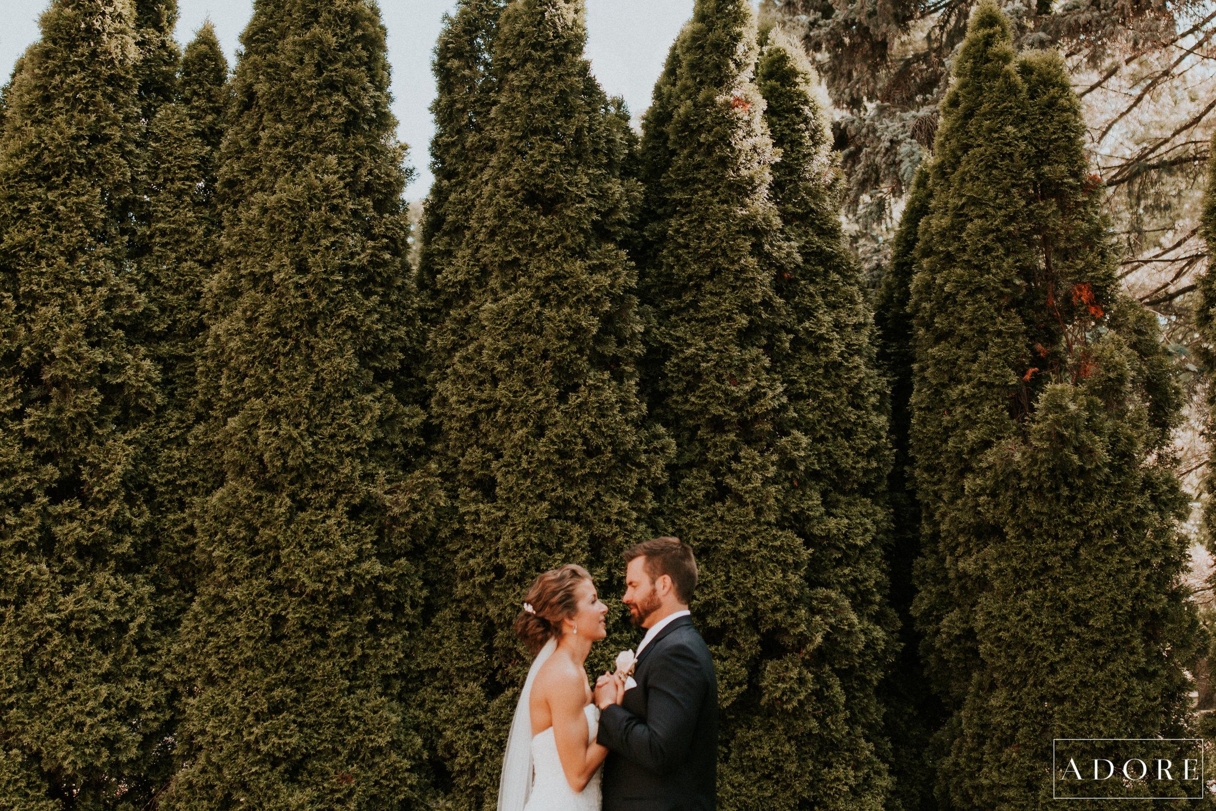 Adore Wedding Photography-21008.jpg