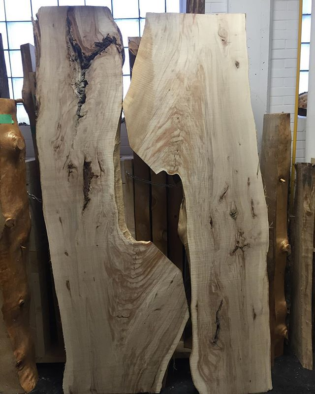 A bit or a recap for the past month, still hauling some epic logs and have milled some incredible slabs this month. Come on down to the shop and see what's new. #band sawmill #yegwoodworkers #liveedgeslabs #lovethegrain #savethetrees