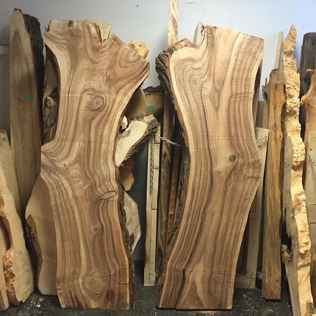 We just got in some new awesome kiln dried slabs to the shop today. For all the resin enthusiasts out there we have a great selection in all shapes and sizes perfect for the resin. #liveedgeslab #bandsaw #bandsawmill #yegwoodworking #creatives #freethinkers #woodart
